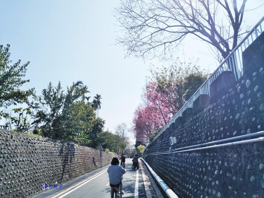 20180220154612 52 - 台中親子遊|東豐綠色走廊好好玩!騎車兼賞櫻 還有週末限定的復古小火車!