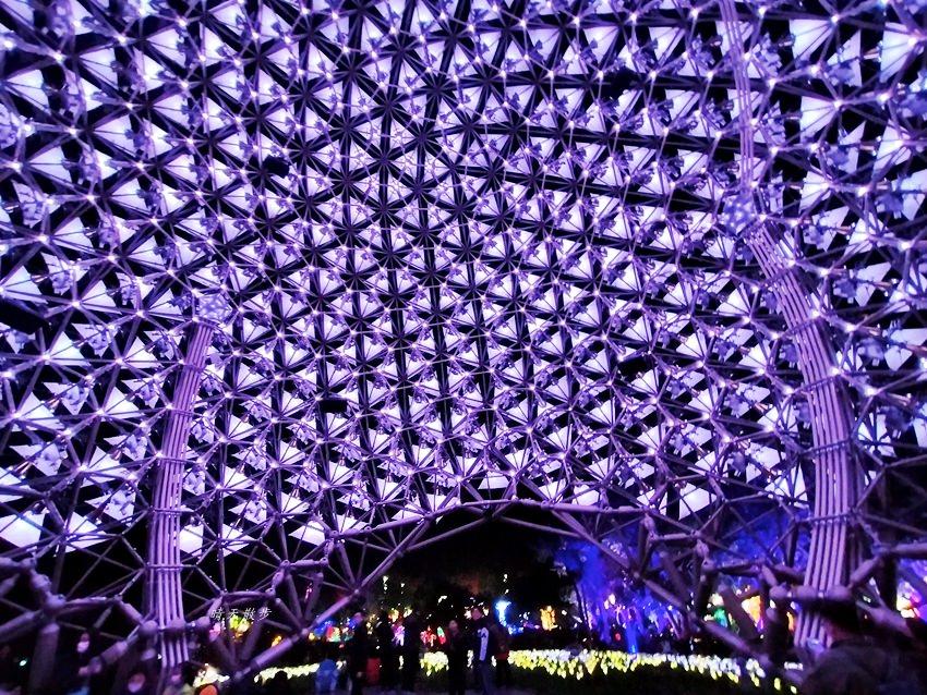 20200220163456 42 - 2020台灣燈會在台中~搭火車去后里逛台中燈會,森林園區好精彩,光之樹、聆聽花開永晝心、無人機秀、森林機械巨蟲秀!