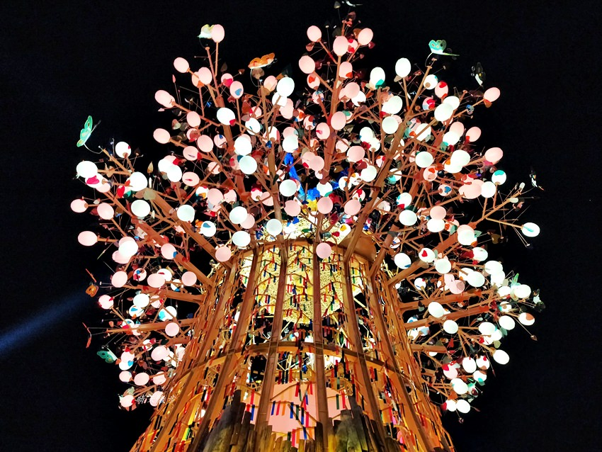 20200220163505 23 - 2020台灣燈會在台中~搭火車去后里逛台中燈會,森林園區好精彩,光之樹、聆聽花開永晝心、無人機秀、森林機械巨蟲秀!