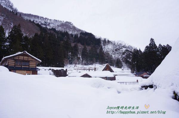 [日本景點]雪地裡的五箇山相倉合掌村~規模比白川鄉合掌村小,但雪地美景無敵的童話世界