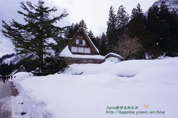 [日本景點]合掌村交通:冬季週末限定世界遺產觀光巴士,走訪童話村~白川鄉、五箇山合掌村(相倉、菅沼)都可到
