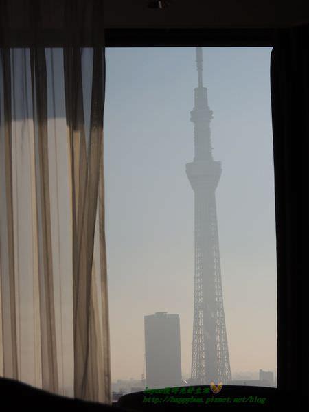 2015東京 3571.JPG