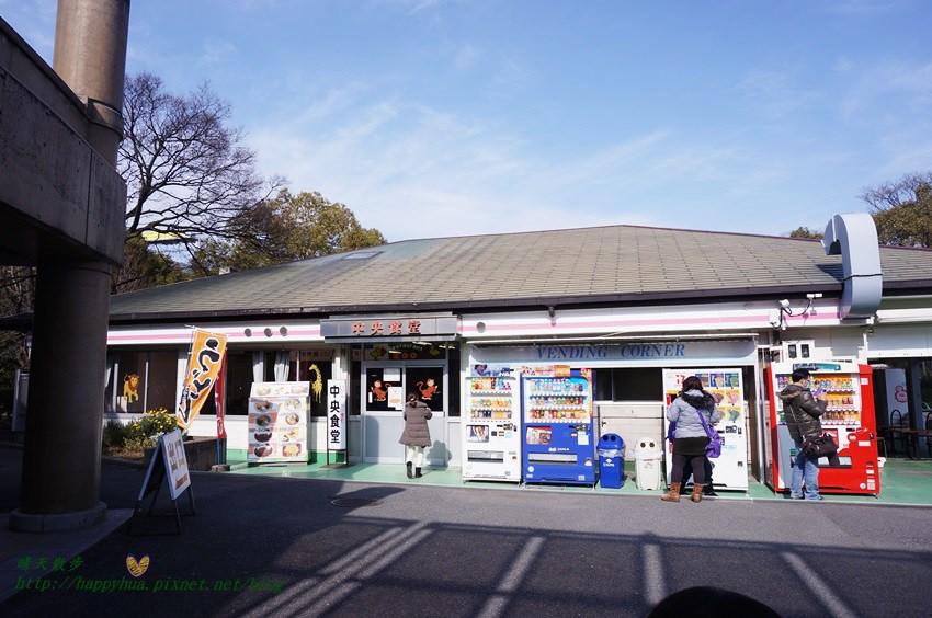 2014大阪天王寺動物園 (10).JPG