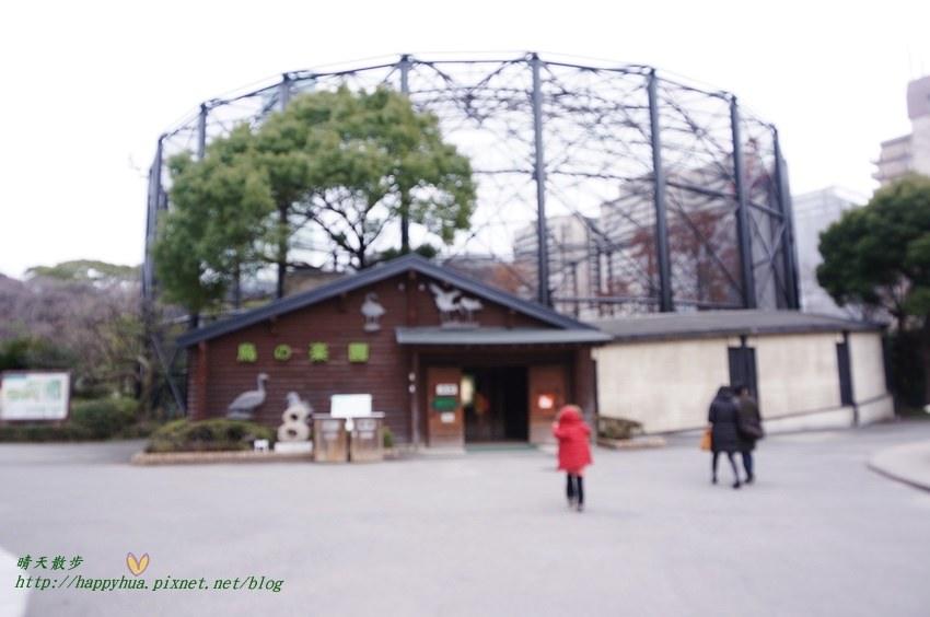 2014大阪天王寺動物園 (53).JPG