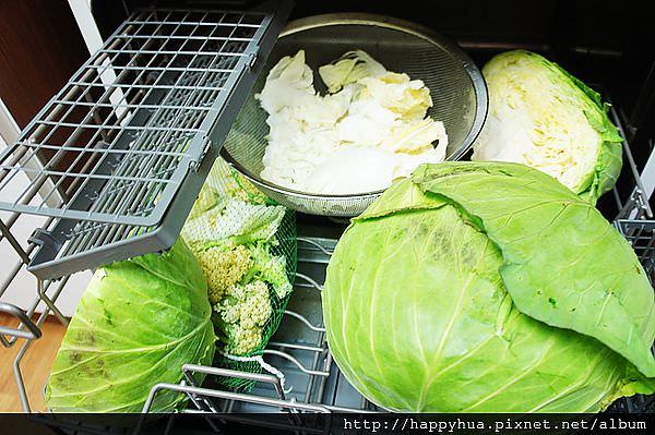 洗蔬果 (6)