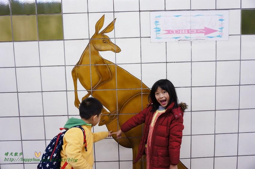 2014大阪天王寺動物園 (2).JPG