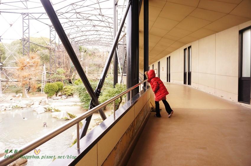 2014大阪天王寺動物園 (56).JPG
