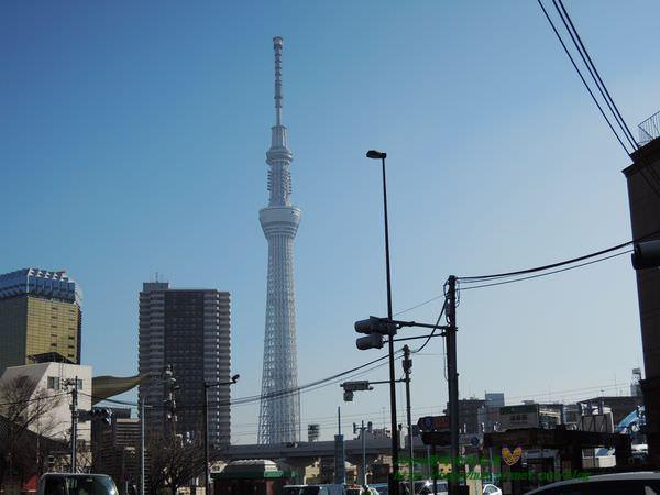 2015東京 3581.JPG